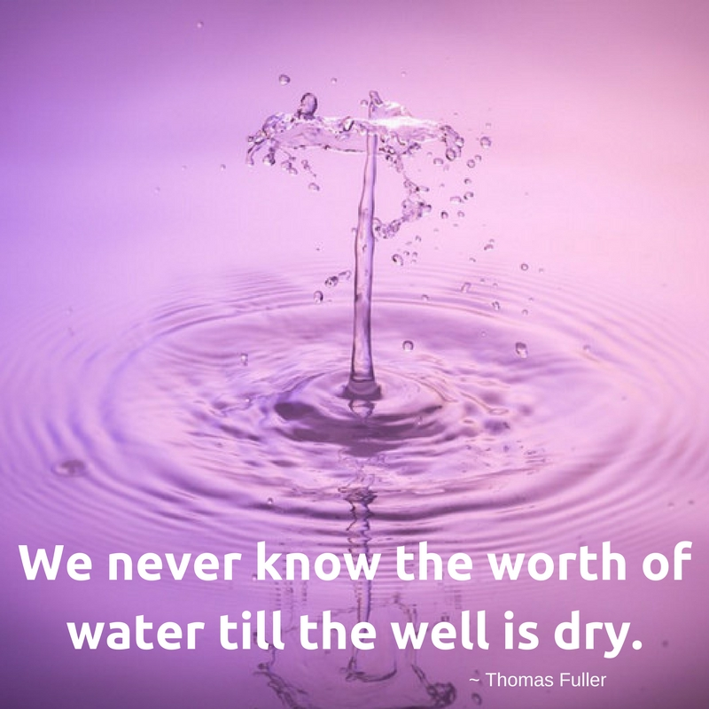 We never know the worth of water till the well is dry.